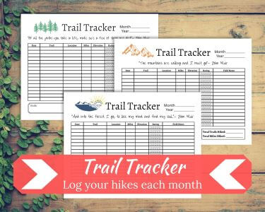Three Trail Trackers on a wood background